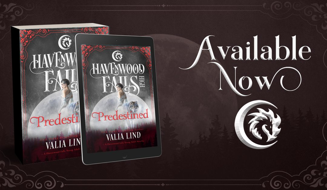 Release Day for Predestined